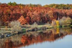 Primer de la opinión del paisaje del otoño de la caída sobre el bosque coloreado multi del otoño que refleja en el río Fotografía de archivo libre de regalías