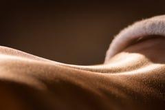 Primer de la parte posterior del ` s de la muchacha antes del masaje fotografía de archivo libre de regalías