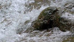 Primer de la pequeña cascada con las rocas cubiertas de musgo, Pan Shot almacen de video