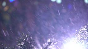 Primer de la rama del pino con nieve que cae y de luces de destello en fondo en la noche almacen de metraje de vídeo