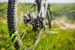 Primer de la rueda de la bicicleta de la montaña en la hierba verde en el prado en el campo Imagen de archivo libre de regalías