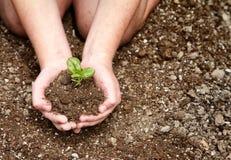 Primer de la suciedad de la explotación agrícola del niño con la planta Fotografía de archivo libre de regalías