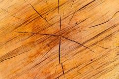 Primer de la textura de madera del corte Fotos de archivo libres de regalías