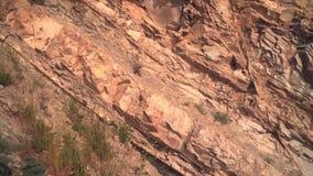 primer de la textura de la pared de piedra La roca es rota por las rayas, con las plantas crecientes almacen de metraje de vídeo