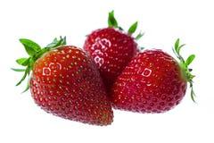 Primer de las fresas Imagen de archivo