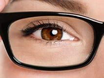 Primer de las gafas de los vidrios Fotografía de archivo