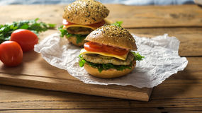 Primer de las hamburguesas hechas caseras Imágenes de archivo libres de regalías