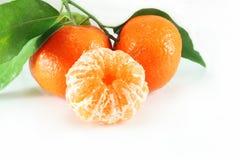 Primer de las mandarinas fotos de archivo