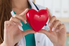 Primer de las manos femeninas del doctor que llevan a cabo el corazón leído fotografía de archivo libre de regalías
