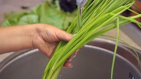 Primer de las manos de las mujeres que lavan las cebollas verdes frescas en el fregadero de cocina metrajes