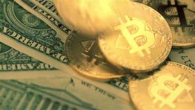 Primer de las monedas de oro del bitcoin que caen abajo almacen de metraje de vídeo
