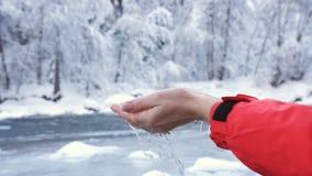 Primer de las palmas que crecen en el agua helada de un río de la montaña en el bosque del invierno almacen de video