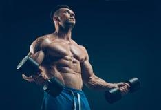 Primer de las pesas de gimnasia de elevación musculares de un hombre joven Imagen de archivo