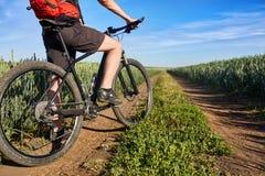 Primer de las piernas del hombre del ciclista con la bici de montaña en rastro al aire libre en el campo del verano Imágenes de archivo libres de regalías
