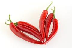 Primer de las pimientas de chile rojo fotos de archivo