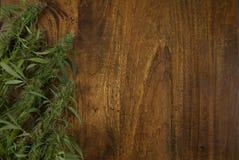 Primer de las plantas sativa de la mala hierba del cáñamo floreciente en fondo de madera con el espacio de la copia imagen de archivo libre de regalías