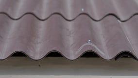 Primer de las tejas de tejado en casa La teja de tejado ondulada curvada de la casa se hace práctica y prudente Diseño práctico d metrajes