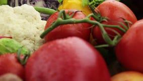 Primer de las verduras almacen de video
