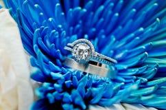 Primer de los anillos de bodas Fotos de archivo