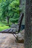 Primer de los bancos de parque vacíos en las hojas de Sunny Summer Day With Golden en árboles, Letonia, Europa, concepto de trist foto de archivo libre de regalías