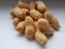 Primer de los cacahuetes en el fondo blanco Imagen de archivo libre de regalías