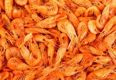 Primer de los camarones Fondo Fotos de archivo