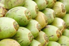 Primer de los cocos verdes apilados Imagen de archivo libre de regalías