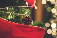 Primer de los conos del pino de la Navidad que cuelgan del árbol de navidad Fotos de archivo
