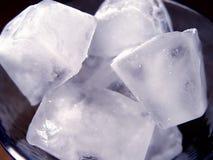 Primer de los cubos de hielo Imagen de archivo libre de regalías