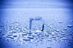 Primer de los cubos de hielo Foto de archivo libre de regalías