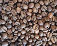 Primer de los granos de café Foto de archivo