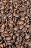 Primer de los granos de café Imagen de archivo libre de regalías