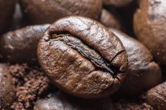 Primer de los granos de café Foto de archivo libre de regalías