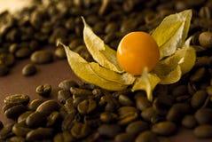Granos del Physalis y de café Foto de archivo libre de regalías