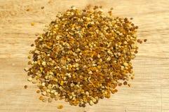 Primer de los granos del polen de la abeja Imagen de archivo
