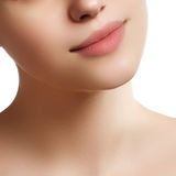 Primer de los labios de la mujer con el mak beige natural del lápiz labial de la moda Imagen de archivo