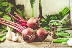 Primer de los nabos recién cosechados de las verduras, remolachas, coche imagen de archivo libre de regalías