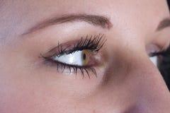 Primer de los ojos de los womans. fotos de archivo