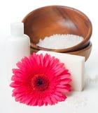 Primer de los productos para el cuidado del balneario y de la carrocería Foto de archivo libre de regalías