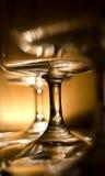 Primer de los vástagos del vidrio de vino Imágenes de archivo libres de regalías