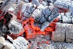 Primer de madera de las ascuas que arde Foto de archivo
