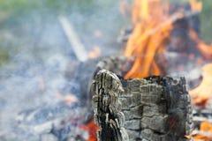 Primer de madera del fuego del humo del primer del fuego de madera fotografía de archivo