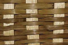 Primer de madera del modelo de la armadura de la corteza fotografía de archivo