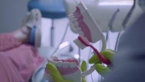 Primer de manos femeninas en los guantes que cepillan los dientes a la mofa del mandíbula Tratamiento dental, concepto médico Cui almacen de video