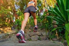 Primer de pies femeninos en las zapatillas de deporte que caminan al aire libre foto de archivo libre de regalías