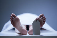 Primer de pies humanos en depósito de cadáveres Imágenes de archivo libres de regalías
