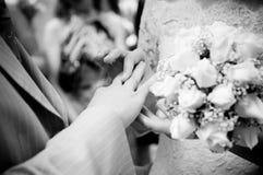 Primer de poner nuevo-casado en los anillos Fotos de archivo