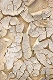 Primer de tierra secado natural del fondo de la textura Fotos de archivo libres de regalías