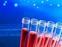 Primer de tubos de ensayo con el líquido rojo en laboratorio Foto de archivo libre de regalías