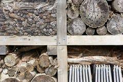 Primer de un hotel de la abeja o del hotel del insecto Imagen de archivo libre de regalías
